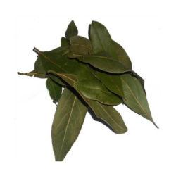 δάφνη φύλλα